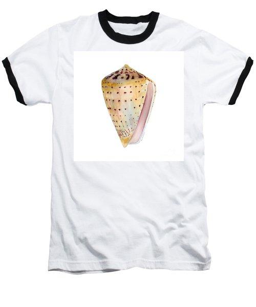 Conus Leopardus Shell Baseball T-Shirt