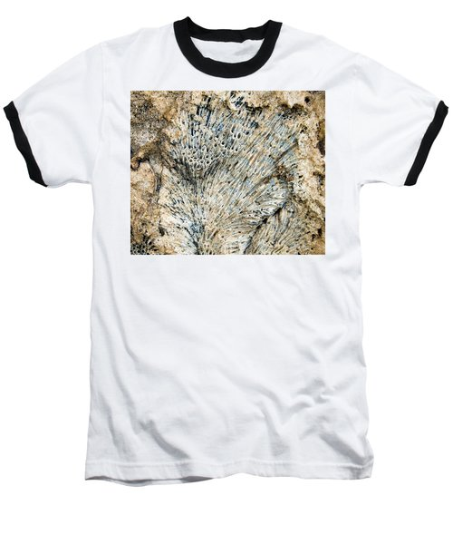 Baseball T-Shirt featuring the photograph Coral Fossil by Jean Noren