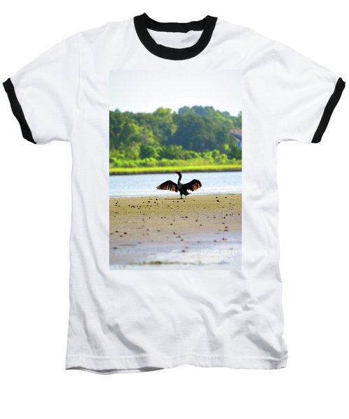 Cormorant At Topsail Beach Baseball T-Shirt by Eva Kaufman