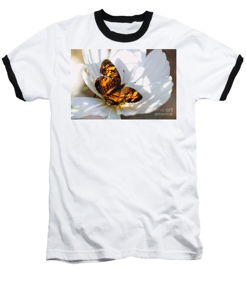 Pearl Crescent Butterfly On White Cosmo Flower Baseball T-Shirt