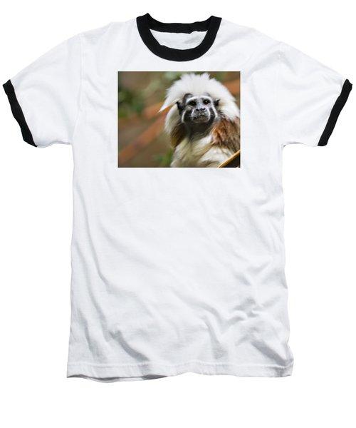 Cotton-top Tamarin _ 1a Baseball T-Shirt