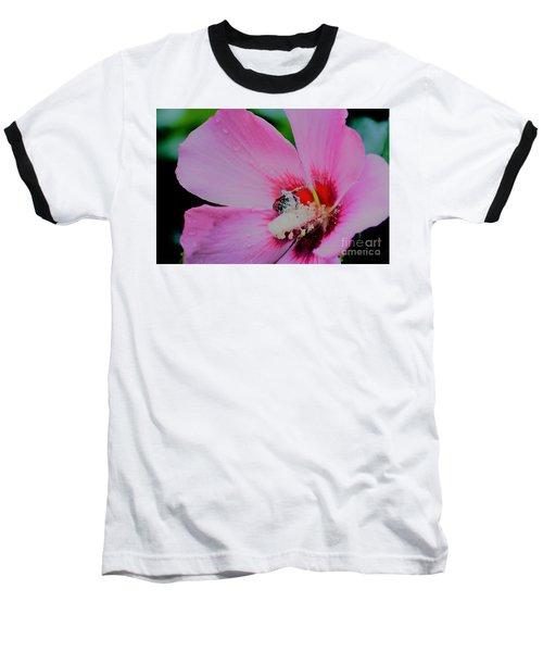Covered In Pollen Baseball T-Shirt