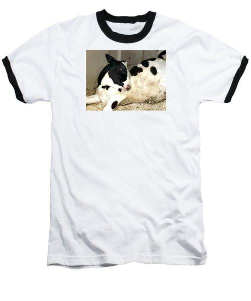 Cow Cutie Baseball T-Shirt