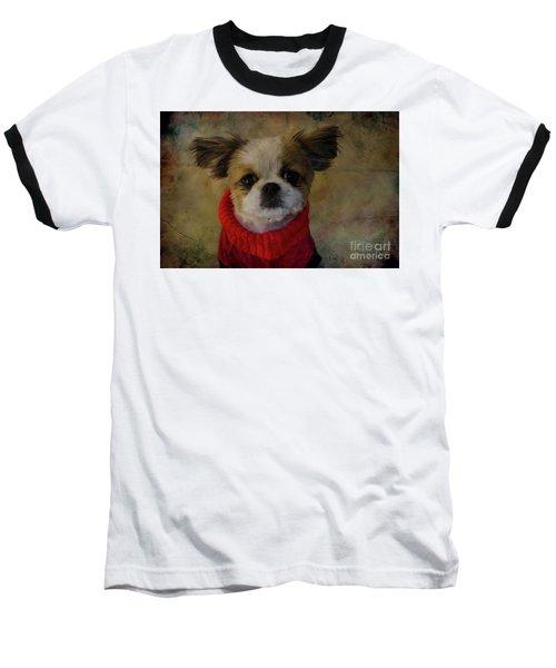 Cozy Sadie Baseball T-Shirt by Al Bourassa