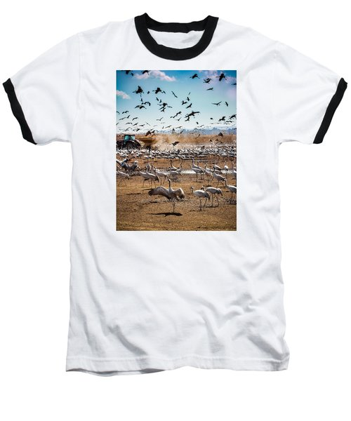 Cranes Feeding Baseball T-Shirt