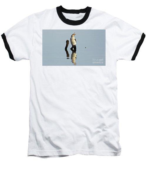 Cranky Cormorant Baseball T-Shirt