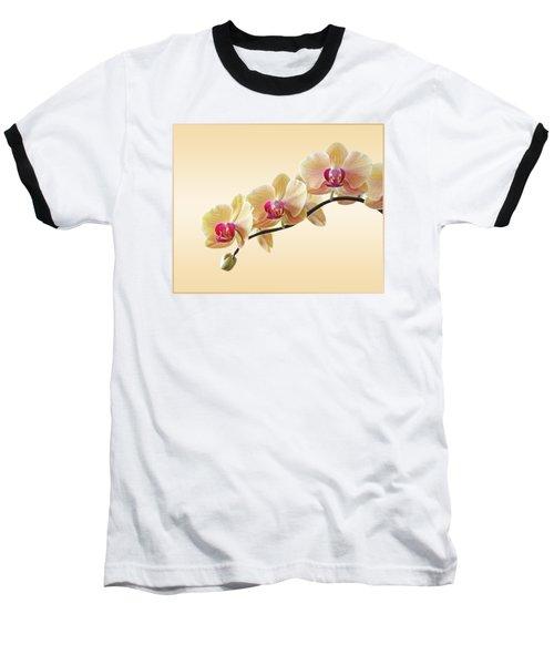 Cream Delight Baseball T-Shirt by Gill Billington