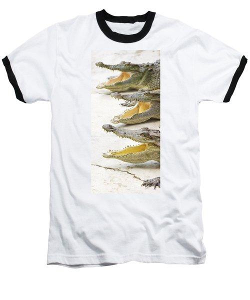 Crocodile Choir Baseball T-Shirt by Jorgo Photography - Wall Art Gallery