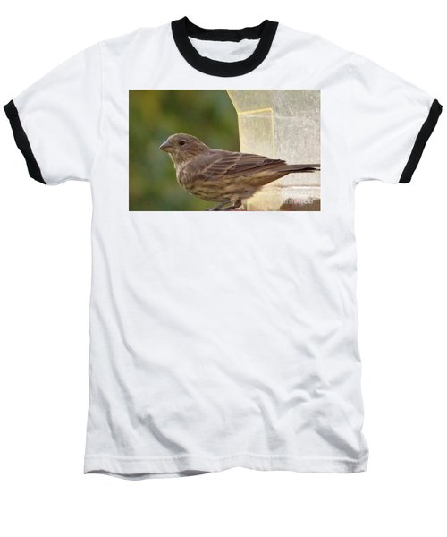 Crossbill Female Portrait      September    Indiana Baseball T-Shirt by Rory Cubel