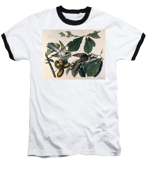 Cuckoo Baseball T-Shirt by John James Audubon