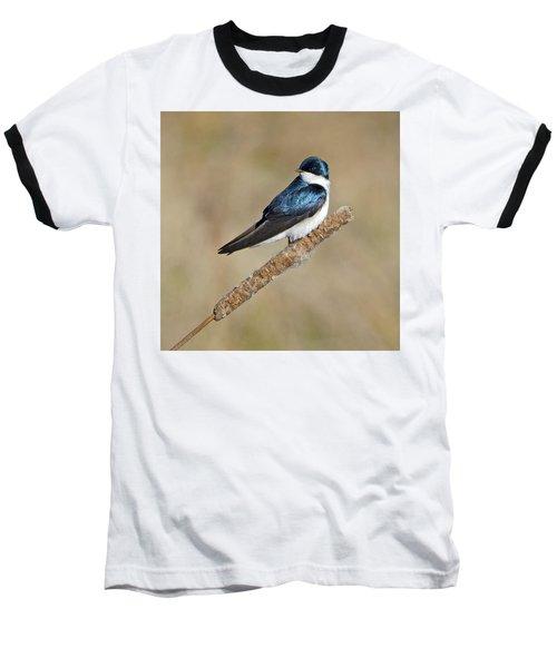 Cushy Perch Baseball T-Shirt by Stephen Flint