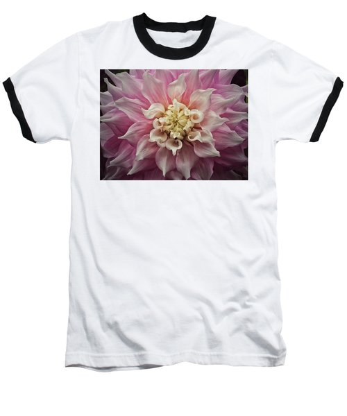 Dahlia Perfection Baseball T-Shirt