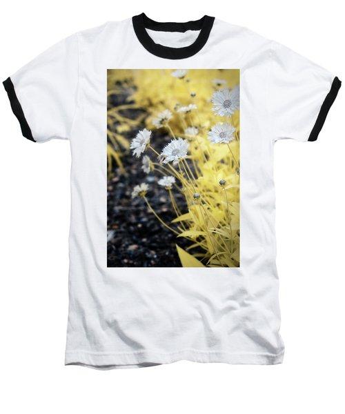 Daisey Baseball T-Shirt by Paul Seymour