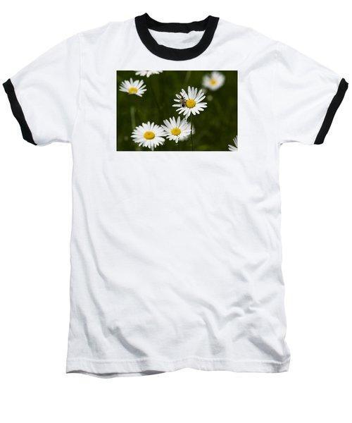 Daisy Visitor Baseball T-Shirt