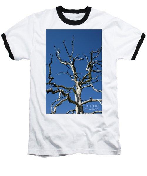 Dead Oak Tree Baseball T-Shirt by Kennerth and Birgitta Kullman