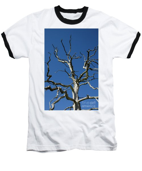 Dead Oak Tree Baseball T-Shirt