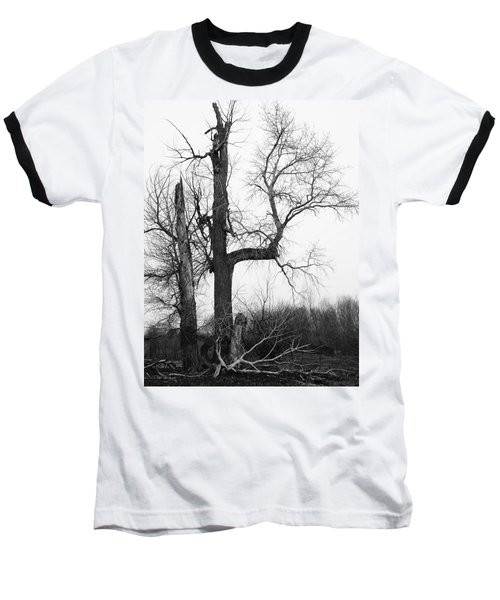 Dead Tree Ten Mile Creek Baseball T-Shirt