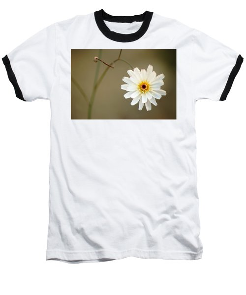 Death Valley Superbloom 104 Baseball T-Shirt