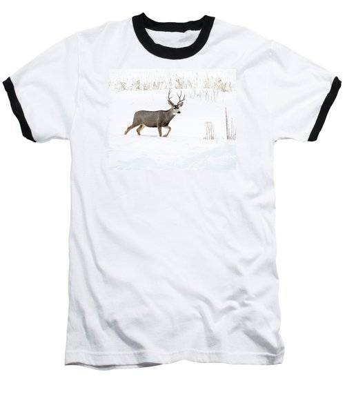 Baseball T-Shirt featuring the photograph Deer In The Snow by Rebecca Margraf