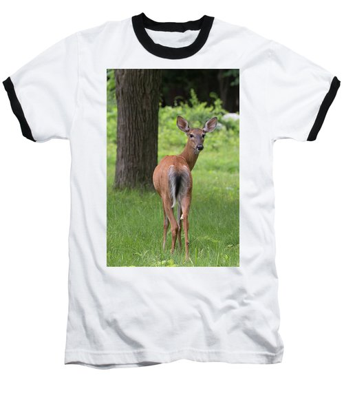 Deer Looking Back Baseball T-Shirt