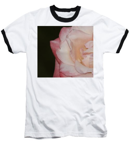 Delicate Pink Rose Baseball T-Shirt by Debra Crank