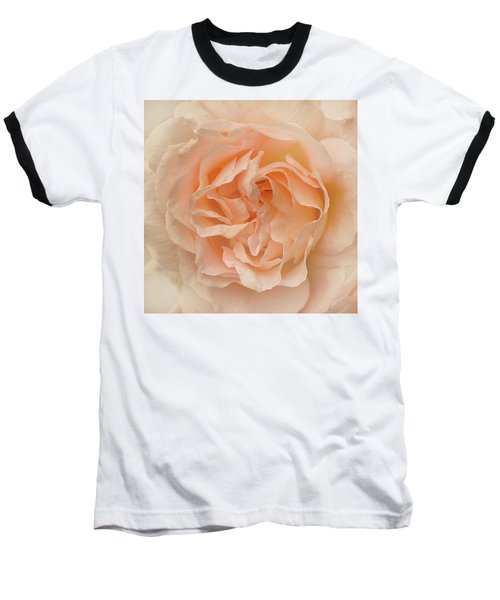 Delicate Rose Baseball T-Shirt by Jacqi Elmslie