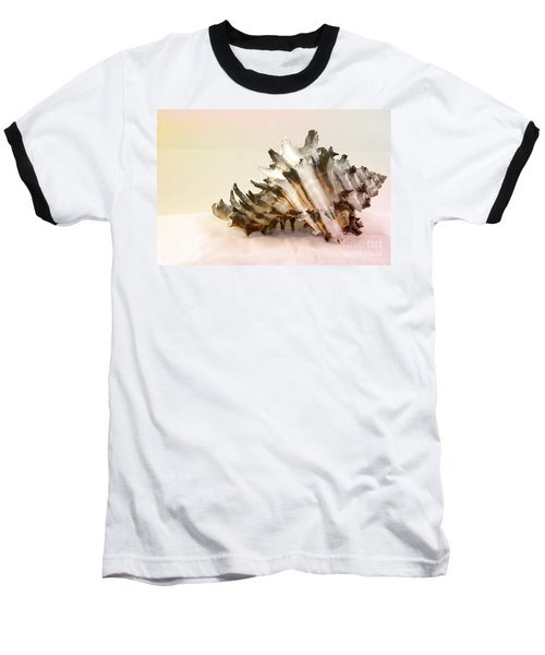 Delicate Shell Baseball T-Shirt