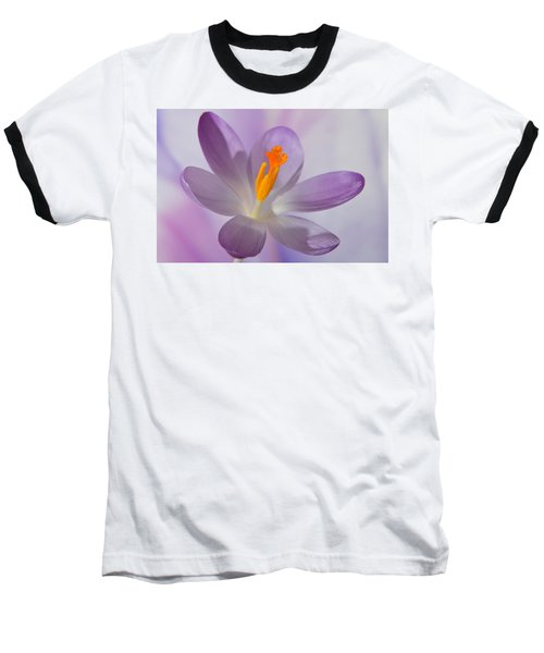 Delicate Spring Crocus. Baseball T-Shirt by Terence Davis