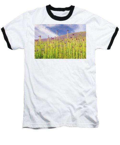 Desert Candles At Carrizo Plain Baseball T-Shirt