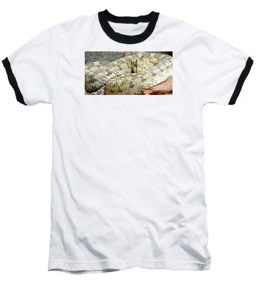Desert Horned Viper Baseball T-Shirt by KD Johnson
