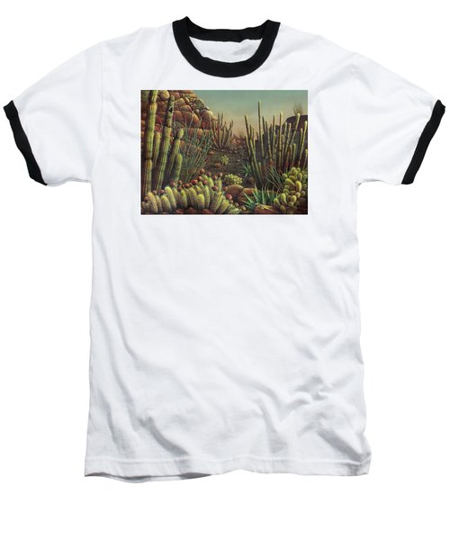 Desert Potpourri  Baseball T-Shirt by James Larkin