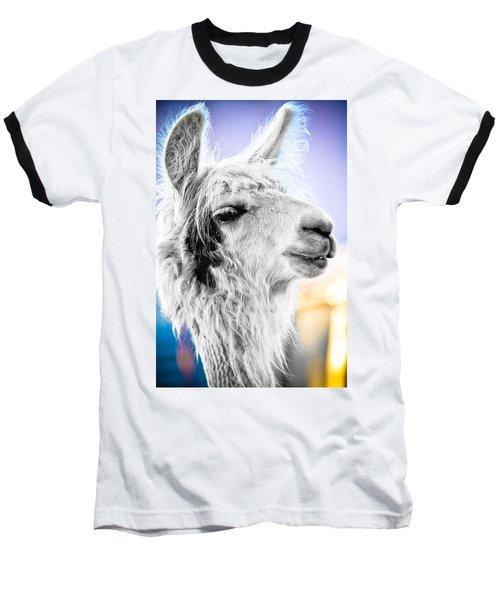 Dirtbag Llama Baseball T-Shirt