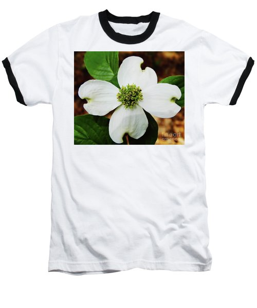 Dogwood Blossom Baseball T-Shirt