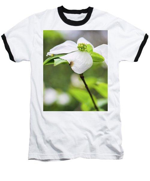 Dogwood Blossom Standing Baseball T-Shirt