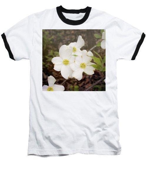 Dogwood Blossom Trio Baseball T-Shirt