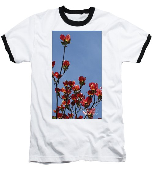 Baseball T-Shirt featuring the photograph Dogwood by Victor K