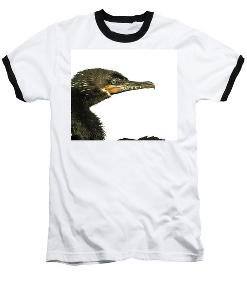 Double-crested Cormorant  Baseball T-Shirt by Robert Frederick