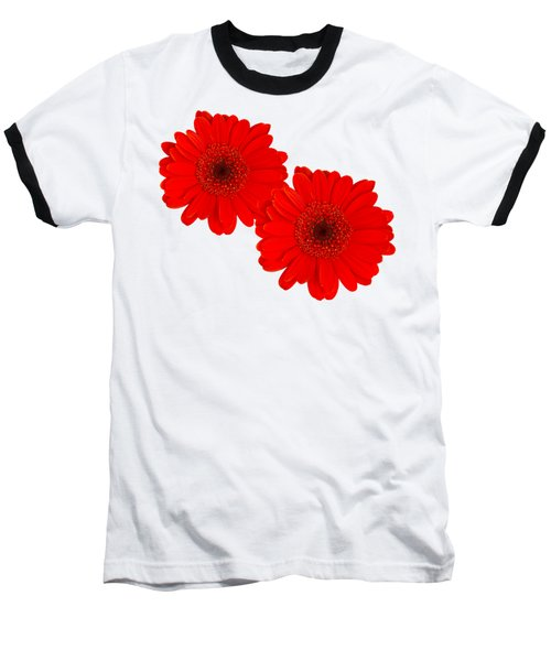 Double Gerbera Baseball T-Shirt by Scott Carruthers