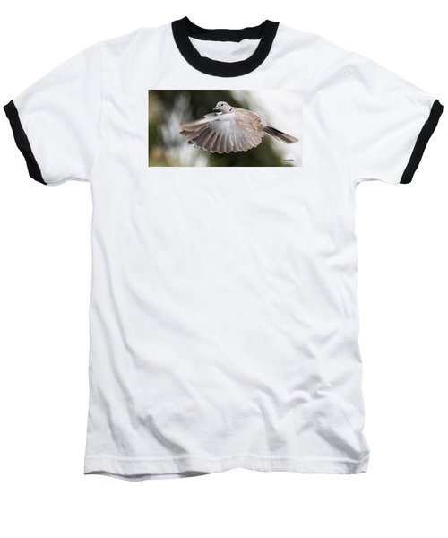 Dove Flight Baseball T-Shirt by Don Durfee