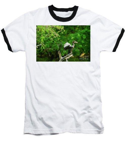 Drying Indian Cormorant Baseball T-Shirt