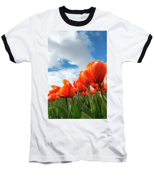 Dutch Tulips Near Keukenhof Baseball T-Shirt