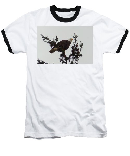 Eagle In A Tree Baseball T-Shirt