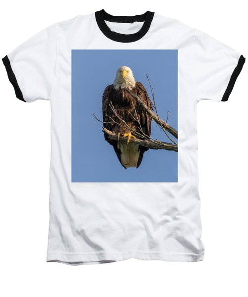 Eagle Stare Baseball T-Shirt