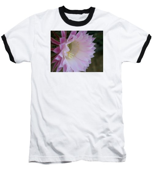 Easter Lily Cactus East 2 Baseball T-Shirt by Marna Edwards Flavell