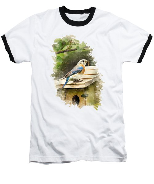Eastern Bluebird Watercolor Art Baseball T-Shirt by Christina Rollo