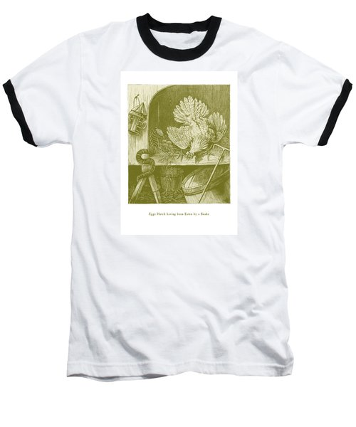 Baseball T-Shirt featuring the drawing Eggs Hatch Having Been Eaten By A Snake by David Davies