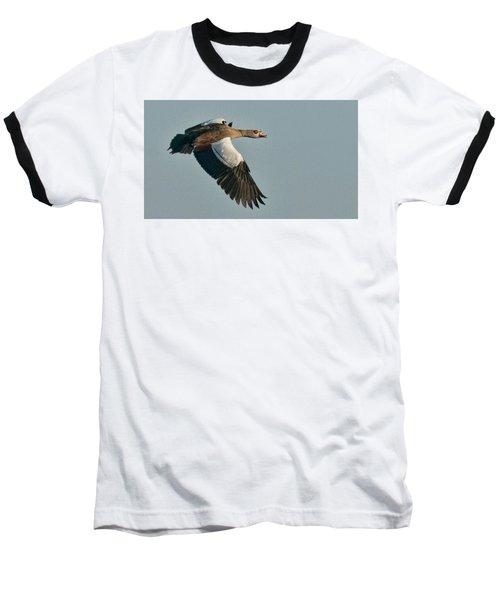 Egyptian Goose Baseball T-Shirt