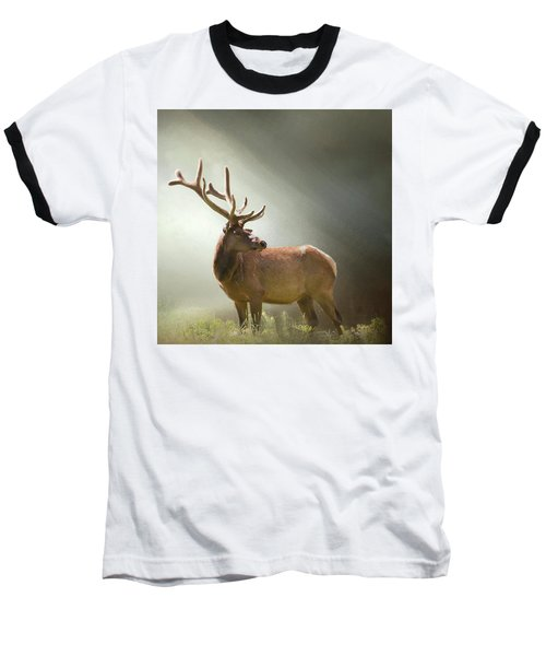 Baseball T-Shirt featuring the photograph Elk In Suns Rays by David and Carol Kelly