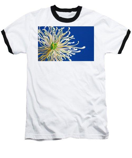 Entendulating Serene Blossom Baseball T-Shirt