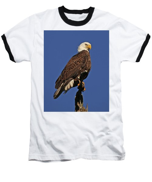 Ever Watchful Baseball T-Shirt